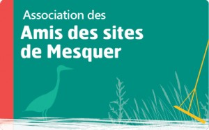 Logo Amis des sites